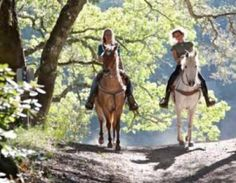 Know Before You Go: Cades Cove Horseback Riding - One of the very best ways to experience the beautiful scenery in Cades Cove is on horseback. Cades Cove Riding Stables offers horseback riding tours for people of all levels of experience. Riding Stables, Horse Riding, Western Riding, Cades Cove, Trail Riding, Horse Breeds, Wine Country, Country Life, Country Living