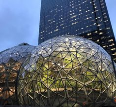 Plant-filled Seattle Spheres open at Amazon headquarters