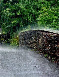 rain,rain, gorgeous rain. I just feel the most intense urge to run through here when I look at this picture.