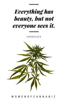 """""""Everything has beauty, but not everyone sees it."""" Normalizing cannabis begins with education. Together, we can change how the world views this plant."""