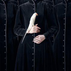 Juliette Bates - Histoires Naturelles (2012)