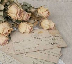 Dried Blush Cream Roses and Vintage Love Letters Old Letters, Paper Letters, Writing Letters, Princess Aesthetic, Handwritten Letters, Vintage Lettering, Old Postcards, Love Notes, Vintage Love