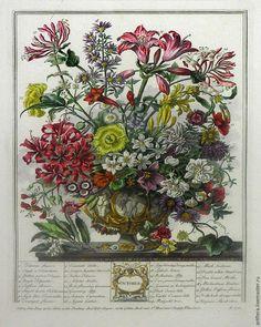 Наконец закончилась зима и закончился мой ремонт !!!!! На этот раз я решила не упустить такого шанса , и нарисовать , хоть что то для себя....Это галерея из ботанических гравюр и большое зеркало . Уже не в первый раз я обращаюсь к творчеству английского художника-ботаника Роберта Фарбера ! Это он , в 1700 году , открыл собственный питомник растений зимующих в Англии.
