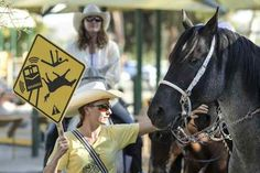 Members of the SAFE Coalition of Northeast Valley Equestrian Communities staged a protest Wednesday outside a California High-Speed Rail working group meeting at the library in Lake View Terrace. (Photo by David Crane Southern California News Group)