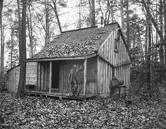 Little old shacks in the woods (Shanty in the woods - Matthews Duckling Pond  1884)