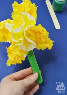 Tissue paper daffodil craft for kidsA A fabulous DIY craft for Spring, Mother's Day or to celebrate St David's Day #Daffodil #kidsactivities