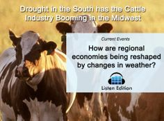 How can the drought raise hamburger prices? Listen and learn: http://www.listenedition.com/2014/06/26/drought-in-the-south-has-the-cattle-industry-booming-in-the-midwest/