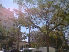 Nice building in Marbella