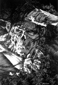 Bernie Wrightson, one of the andreas' influences. see also : http://pinterest.com/jefwesh/berni-wrightson/