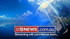 Domestic dogs filmed 'torturing' injured kangaroo on Victorian farm - 9news.com.au