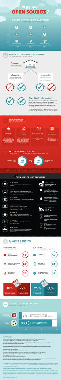 The Official Rackspace Blog - Open Cloud Computing: Why Go Open? [Infographic]