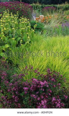 Scampston Hall. Design: Piet Oudolf. Prairie planting Sesleria autumnalis. Origanum 'Rosenkuppel'. Phlomis russeliana. Monarda