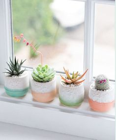 A cactus is a superb means to bring in a all-natural element to your house and workplace. The flowers of several succulents and cactus are clearly, their crowning glory. Cactus can be cute decor ideas for your room. Decoration Cactus, Decoration Plante, Home Decoration, Cacti And Succulents, Planting Succulents, Planting Flowers, Succulent Pots, Succulent Ideas, Plant Pots