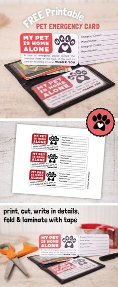FREE printable Dog Emergency / Cat Emergency contact info card from kudzumonster.net