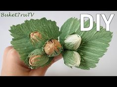 Do-it-yourself autumn crafts. Hazelnuts with corrugated paper sweets. Crepe Paper Flowers, Diy Flowers, Fabric Flowers, Paper Video, Bulb Vase, Diy And Crafts, Paper Crafts, Chocolate Bouquet, Flower Tutorial