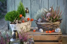 Dušičkové inšpirácie na jeseň i zimu #gravedecor Fall Decor, Autumn, Table Decorations, Plants, Furniture, Home Decor, Decoration Home, Room Decor, Fall