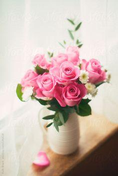 Vase of roses on a window sill by Ruth Black - Vase, Flower - Stocksy United Good Morning Rose Images, Good Morning Roses, Beautiful Flower Arrangements, Floral Arrangements, Beautiful Roses, Beautiful Flowers, Flower Pictures, Flower Wallpaper, Spring Flowers