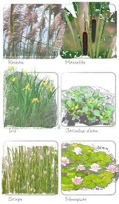 12 meilleures images du tableau syst me d 39 irrigation landscaping landscaping ideas et