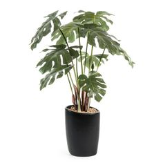 Vaso con filodendro artificiale H 46 cm