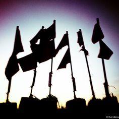 fisherman flags