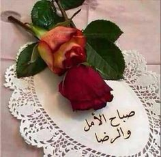 Good Morning Arabic, Beautiful Places, Fruit, Tableware, Food, Mornings, Islamic, Nature, Bonjour