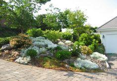 rocaille jardin en pente- étapes de construction, conesils de plantation et photos