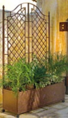 Looking For A Metal Trellis For Your Garden? Lots Of Trellises, Trellis  Ideas And Different Trellis Designs And A Place To Buy Metal Trellises At A  Great ...