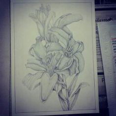dibujos realistas