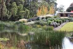 Cheap Landscaping Near Me Landscaping Las Vegas, Landscaping On A Hill, Landscaping Company, Landscaping With Rocks, Bush Garden, Garden On A Hill, Landscape Architecture, Landscape Design, Garden Design