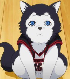 Seirin's mascot (Number 2) - Kuroko no Basket