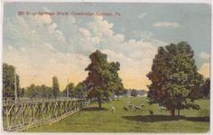 "1912 Cambridge Springs Pennsylvania, ""The Gray Springs Walk"" Farm Scene"