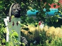 The sad tale of the abandoned Alice in Wonderland theme park