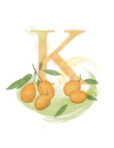 Art print of my own original mixed media illustration. Letter K Kumquat - Part of an alphabet/initials series featuring natural objects such Alphabet Art, Alphabet And Numbers, Letter Art, Botanical Illustration, Graphic Design Illustration, Nature Letters, Monogram Letters, Embroidery Art, Vintage Flowers