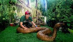 Sole Escape: Bohol Python Sanctuary and Mini-Zoo