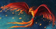 Phoenix - Description, History and Stories | Mythology.net