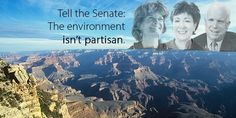 Tell the Senate: The Environment isn't Partisan - Defend Public Health and the EPA President Trump's budget would slash EPA programs for the Great Lakes, San Francisco Bay, Puget Sound and much more. (82143 signatures on petition)
