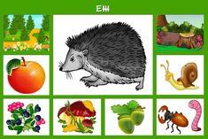 ✿ Развитие и воспитание детей ✿ Free Preschool, Preschool Worksheets, Preschool Activities, Animal Crafts For Kids, Animal Activities, Diy Crafts For Gifts, Educational Toys, Games For Kids, Science