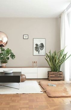 This living room gives a very nice feeling. The copper ball ceiling lamp is a gr… This living room gives a very nice feeling. The copper ball ceiling lamp is a great match witch the wall color, the plants are a contrasting element. Living Room Windows, Living Room Interior, Home Living Room, Living Room Designs, Living Room Wall Colors, Apartment Interior, Copper Living Room Decor, Colorful Living Rooms, Living Room Walls