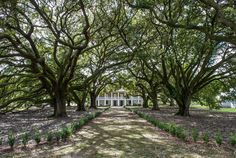 Whitney Plantation, Big House Inside America's Auschwitz A new museum offers a rebuke — and an antidote — to our sanitized history of slavery New Orleans Plantation Tours, New Orleans Plantations, Southern Plantations, Bernie Sanders, African American Genealogy, American History, New Orleans Museums, The Ranch, New Orleans