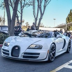 Outrageous is the only way to describe the Bugatti Veyron. The fastest production car in the world with a top speed of Bugatti Veyron, Bugatti Cars, Bugatti 2017, Rolls Royce, Maserati, Ferrari F40, Aston Martin, Dream Cars, Exotic Sports Cars
