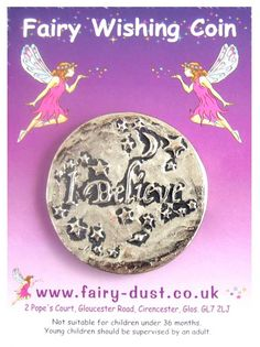 fairy wishing coins