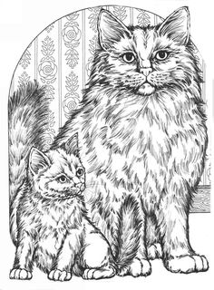 Coloring pages, cats - Coloring for adults - Kleuren voor volwassenen Cat Coloring Page, Colouring Pics, Animal Coloring Pages, Coloring Book Pages, Printable Coloring Pages, Catty Noir, Cat Colors, Cat Crafts, Cat Drawing
