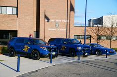 Michigan State Police, they border our other end of the I-94 super slab, it's only 45 miles from IL to MI, Waffco works almost all of it. www.waffco.net