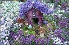 Sweet Alyssum Fairy Garden
