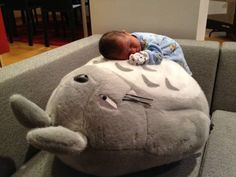 every parent/hospital should have a Totoro