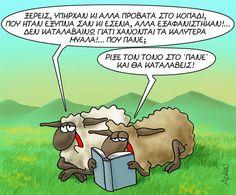 Funny Phrases, Funny Quotes, Funny Greek, Greek Quotes, Haha, Jokes, Humor, Sayings, Comics