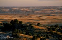 Plains Sunset ~ Texas Panhandle north of Pampa and the Canadian River.  photo by Wyman Meinzer, official Texas State Photographer.