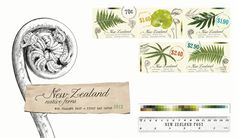 NZ Native Ferns First Day Cover First Day Covers, Ferns, Postage Stamps, Nativity, Place Card Holders, Graphic Design, Visual Communication, Birth, Stamps
