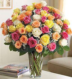 Ultimate Elegance 4 Dozen Premium Long Stem Assorted Roses : Cape Coral, FL Florist : Same Day Flower Delivery for any occasion Basket Flower Arrangements, Rose Arrangements, 800 Flowers, Beautiful Flowers, Wedding Bouquets, Wedding Flowers, Send Roses, Same Day Flower Delivery, Party