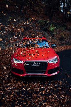 24 ideas for audi cars background Car Iphone Wallpaper, Sports Car Wallpaper, Red Wallpaper, Audi Sport, Sport Cars, Jaguar Xjr, Red Audi, Bmw Red, Black Audi